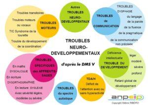 les troubles neuro-développement
